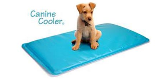 tapis rafraîchissant pour chiens